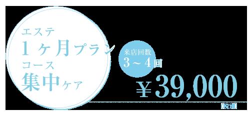 エステ1ヶ月プランコース 集中ケア 来店回数3~4回 ¥39,000