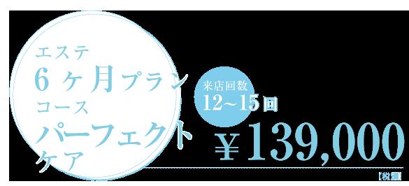エステ6ヶ月プランコース パーフェクトケア 来店回数12~15回  ¥139,000
