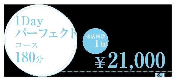 一日スペシャルコース直前ケア 来店回数1回 ¥21,000