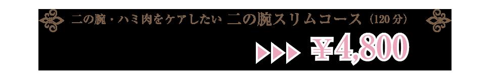 二の腕・ハミ肉をケアしたい 二の腕スリムコース(120分)¥23,000→¥4,800